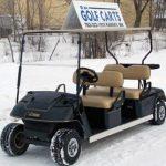 custom stretch limo cart